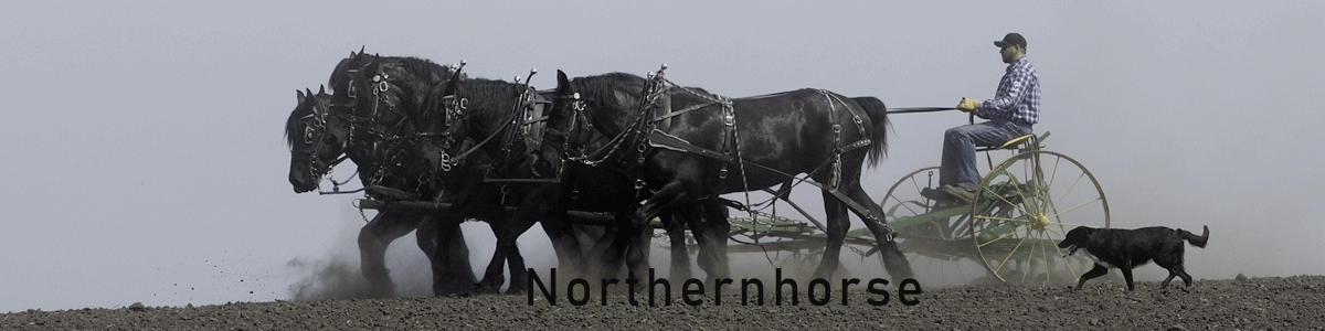 Northernhorse.com Splash image