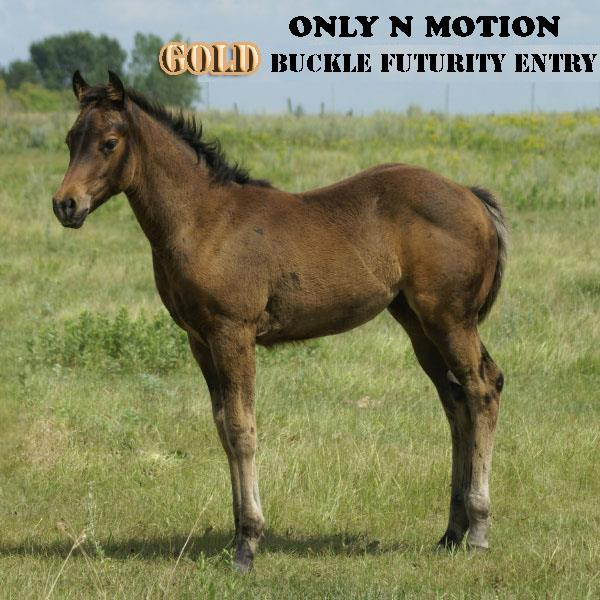 ONLY N MOTION