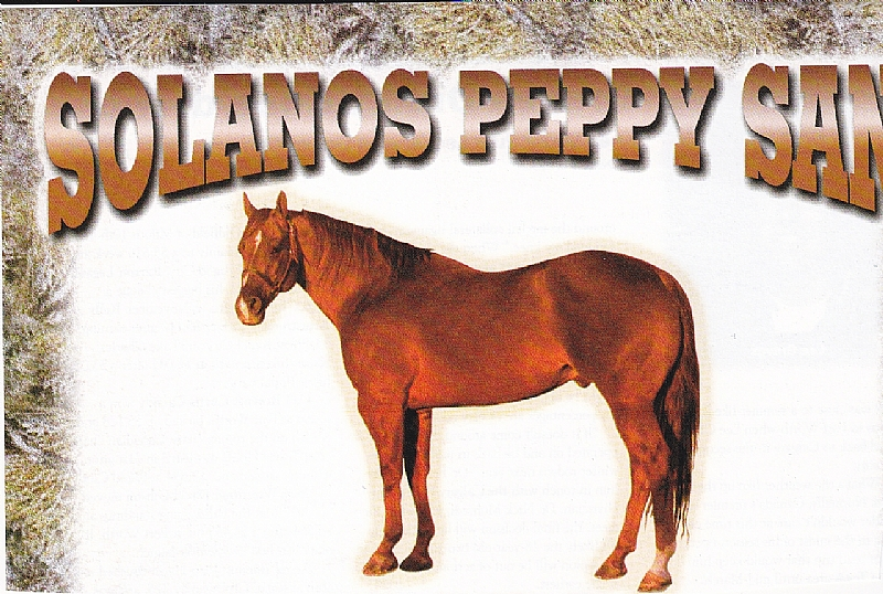 solanos peppy san   keith farms