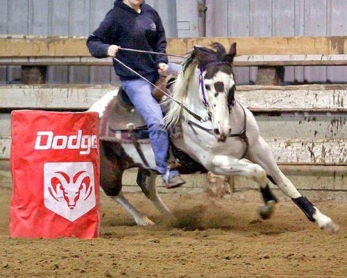 Black and White Barrel Racing